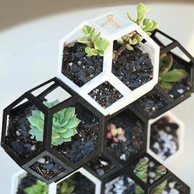 Diese kleine Pflanztöpfe können dank Ihrer Form ineinander gesteckt und verbaut werden. Erstellen Sie sich Ihr eigenes kleines Kunstwerk aus Pflanzen mti Ihrem 3D Drucker – Quelle: Thingiverse thing: 2846859